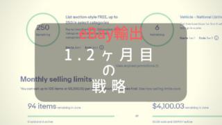 ぱにゃのeBay戦略
